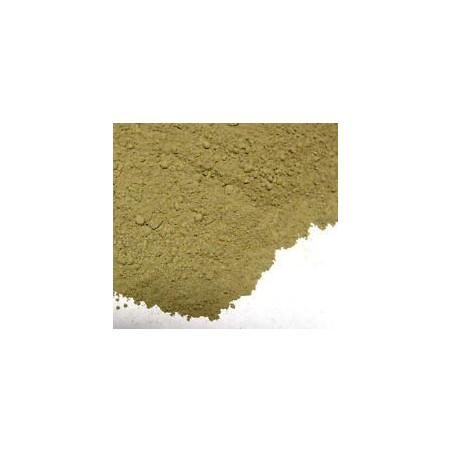 100 grs LOSNA - Artemisia absinthium