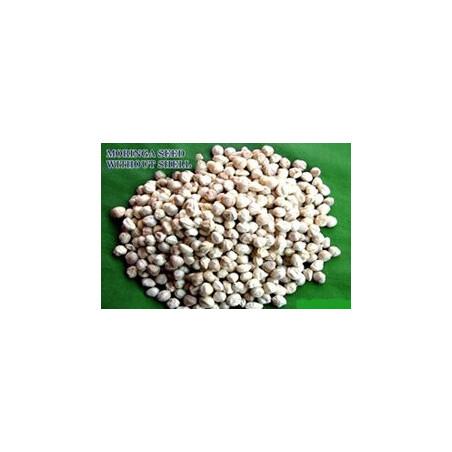 200 grs CHIA - Salvia hispânica