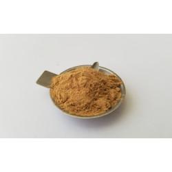 25 grs cacto san pedro  (trichocereus pachanoi)