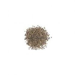 50 sementes alface...