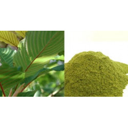 25 grs kratom red thai...