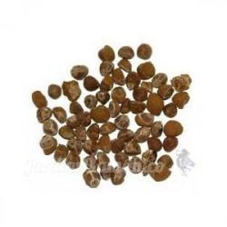 15 sementes argyreia...